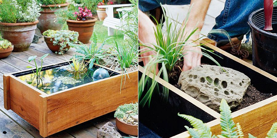 Easy pond in a box idea for the small garden