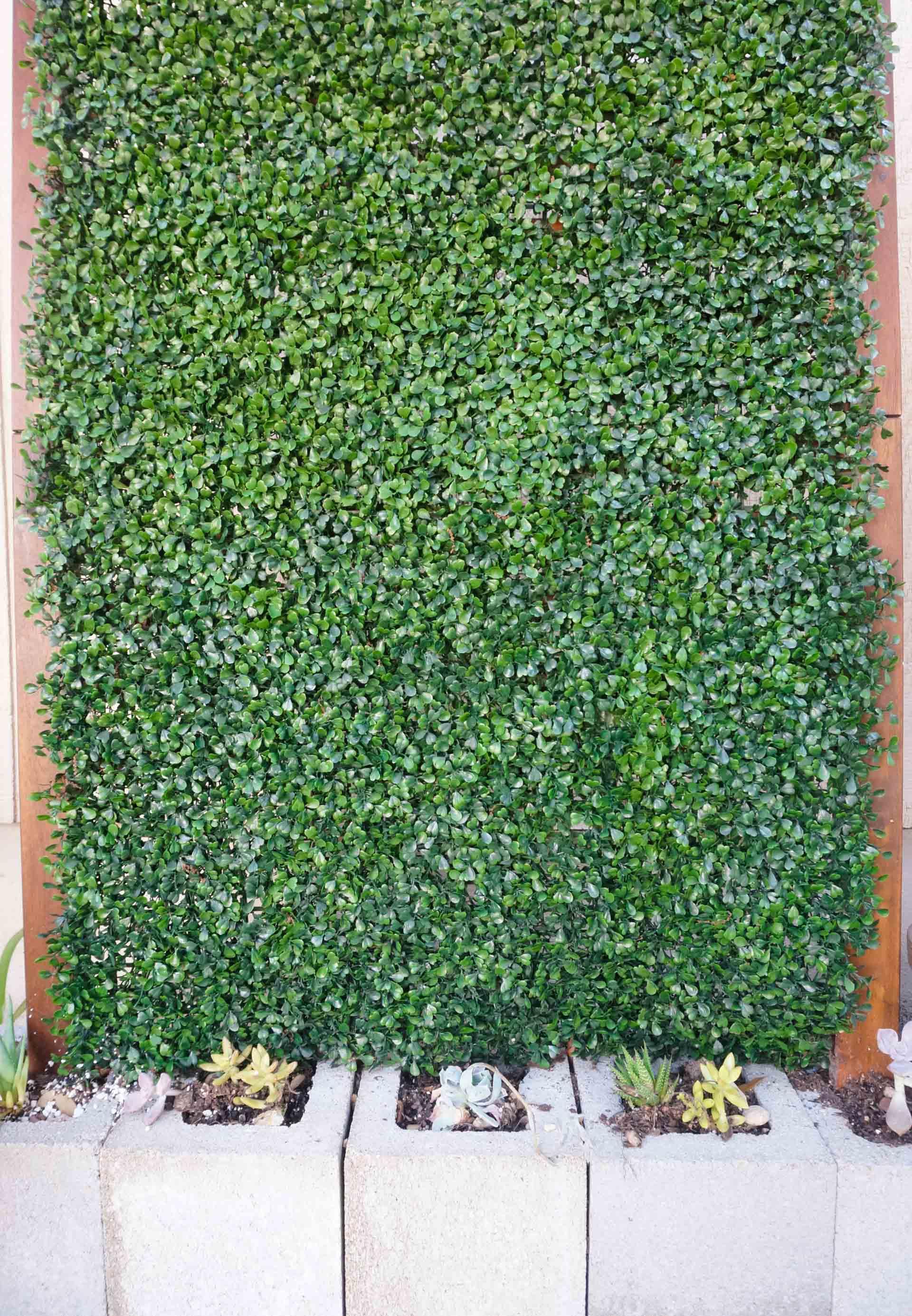 Faux-boxwood-creates-an-evergreen-feel