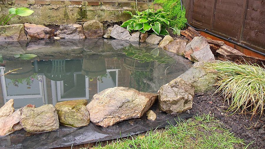 Garden fish pond DIY with stones and greenery all around