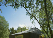 Glazed-windows-and-smart-design-give-the-cabin-a-cool-look-on-the-outside-217x155