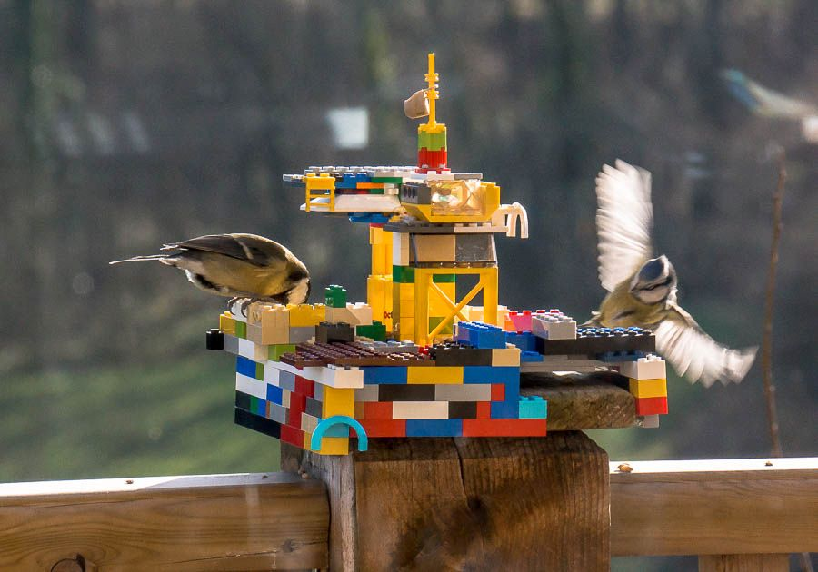 LEGO-bird-feeder-lets-your-imagination-take-flight-with-new-wings