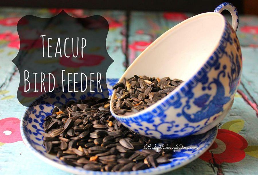 Lovely-little-teacup-bird-feeder-is-a-hit-in-every-garden