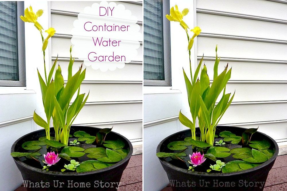 Mini DIY water garden for those who just cannot have a full pond