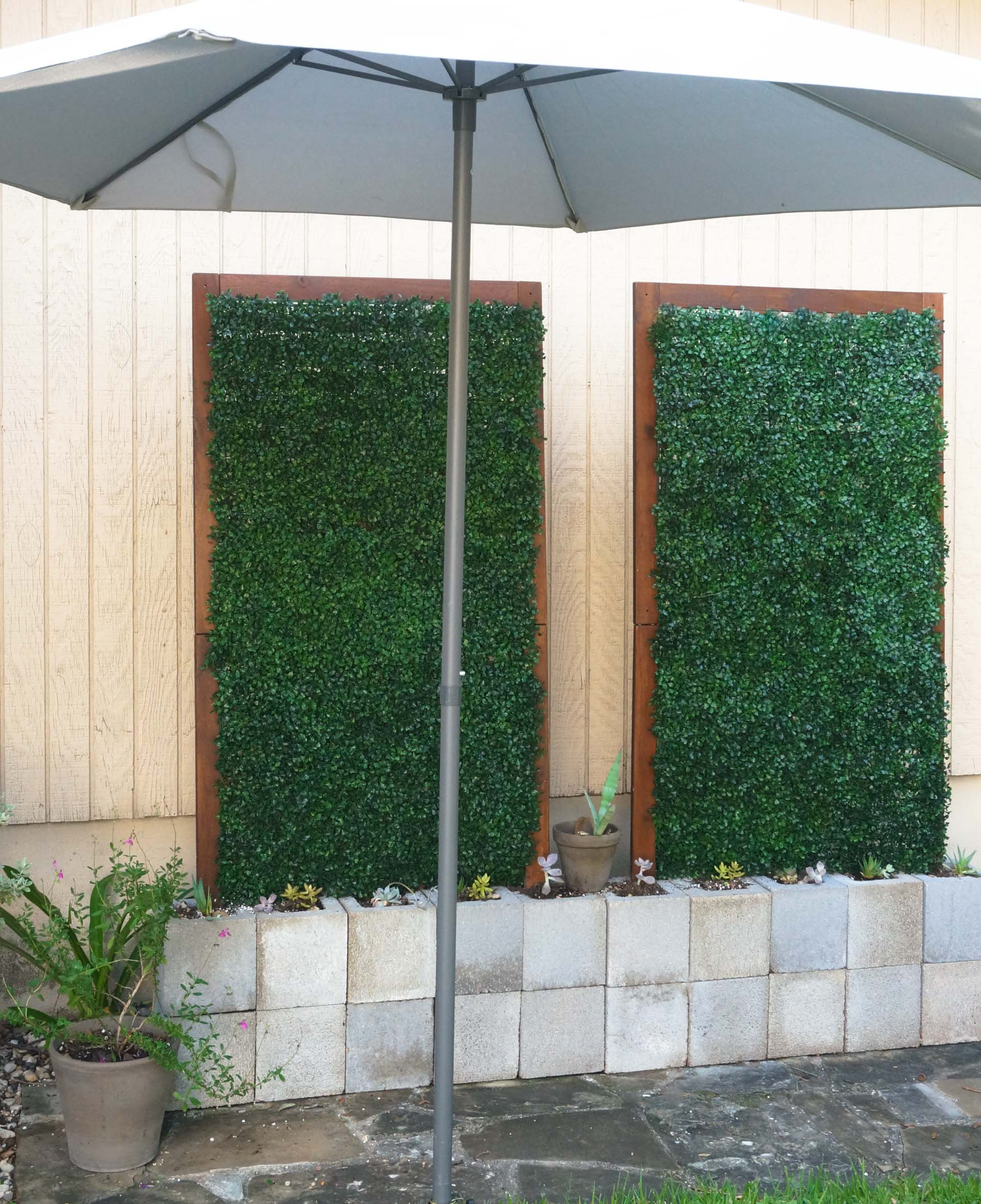 Outdoor trellises with boxwood vines