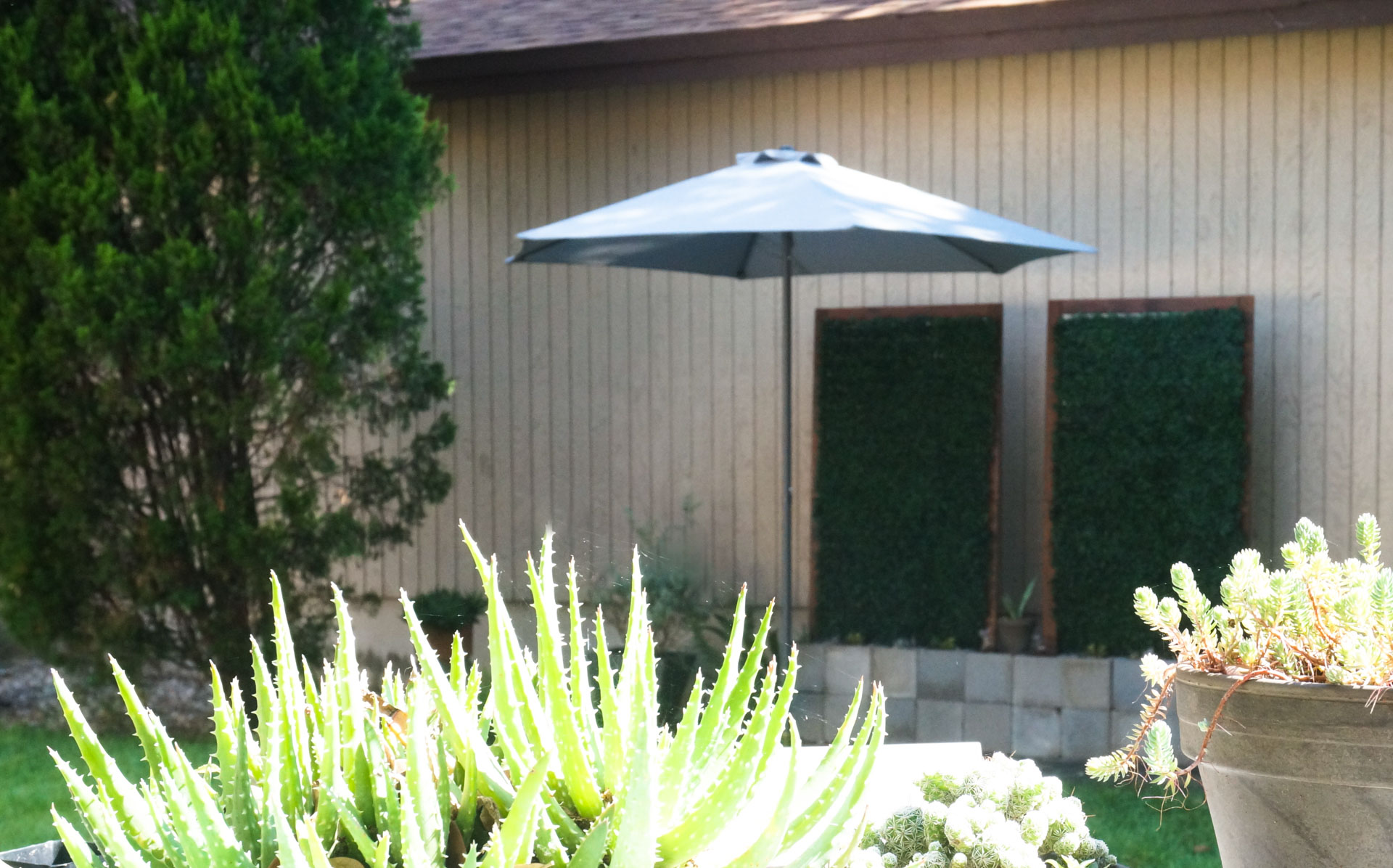 Potted plants, trellises and patio umbrella shade