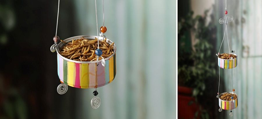 Small-decorated-tuna-can-filled-with-food-is-all-you-need-to-attract-some-birds