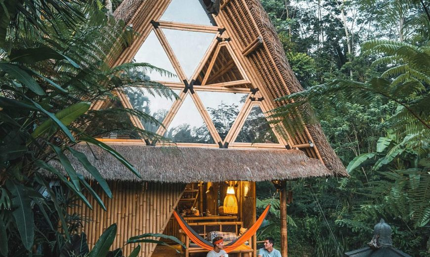 Magical Nights In The Bamboo House Take You Into Jungles Of