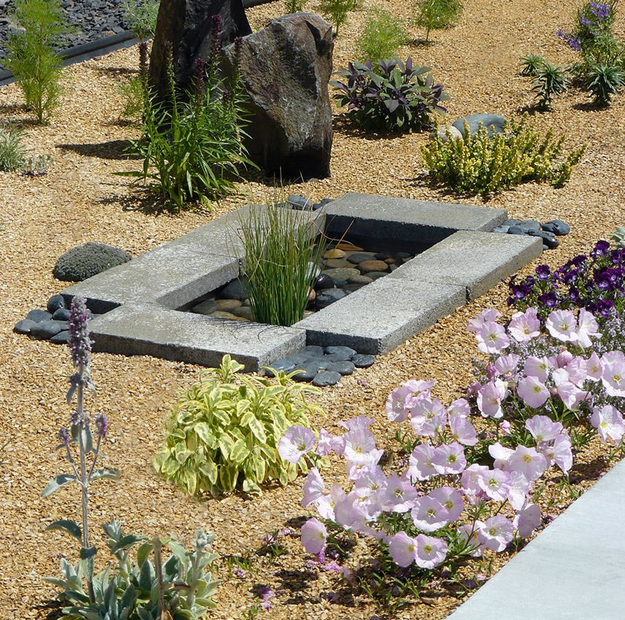 Tiny-Contemporary-water-pond-built-on-a-budget-of-less-than-30
