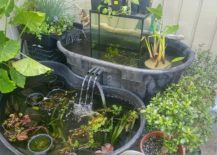 Use-those-old-tubs-to-build-cool-and-small-garden-ponds-with-fish-217x155
