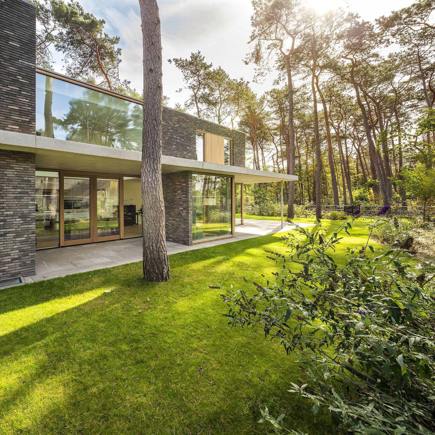 Natural canopy and green landscape offer cover to the house