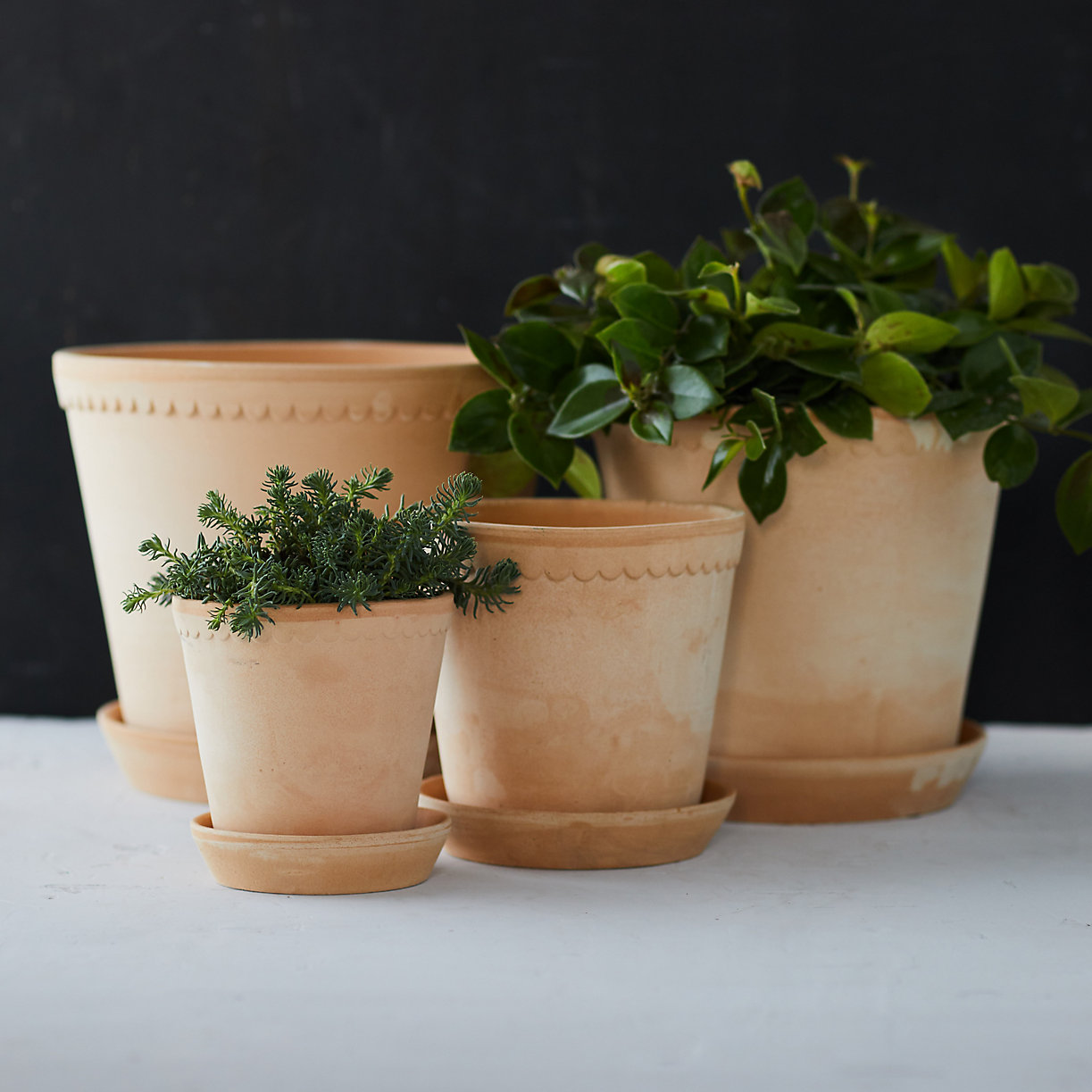 Scalloped pots from Terrain