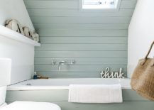 Smart-use-of-pastel-green-in-the-bathroom-give-its-a-soothing-natural-appeal-217x155