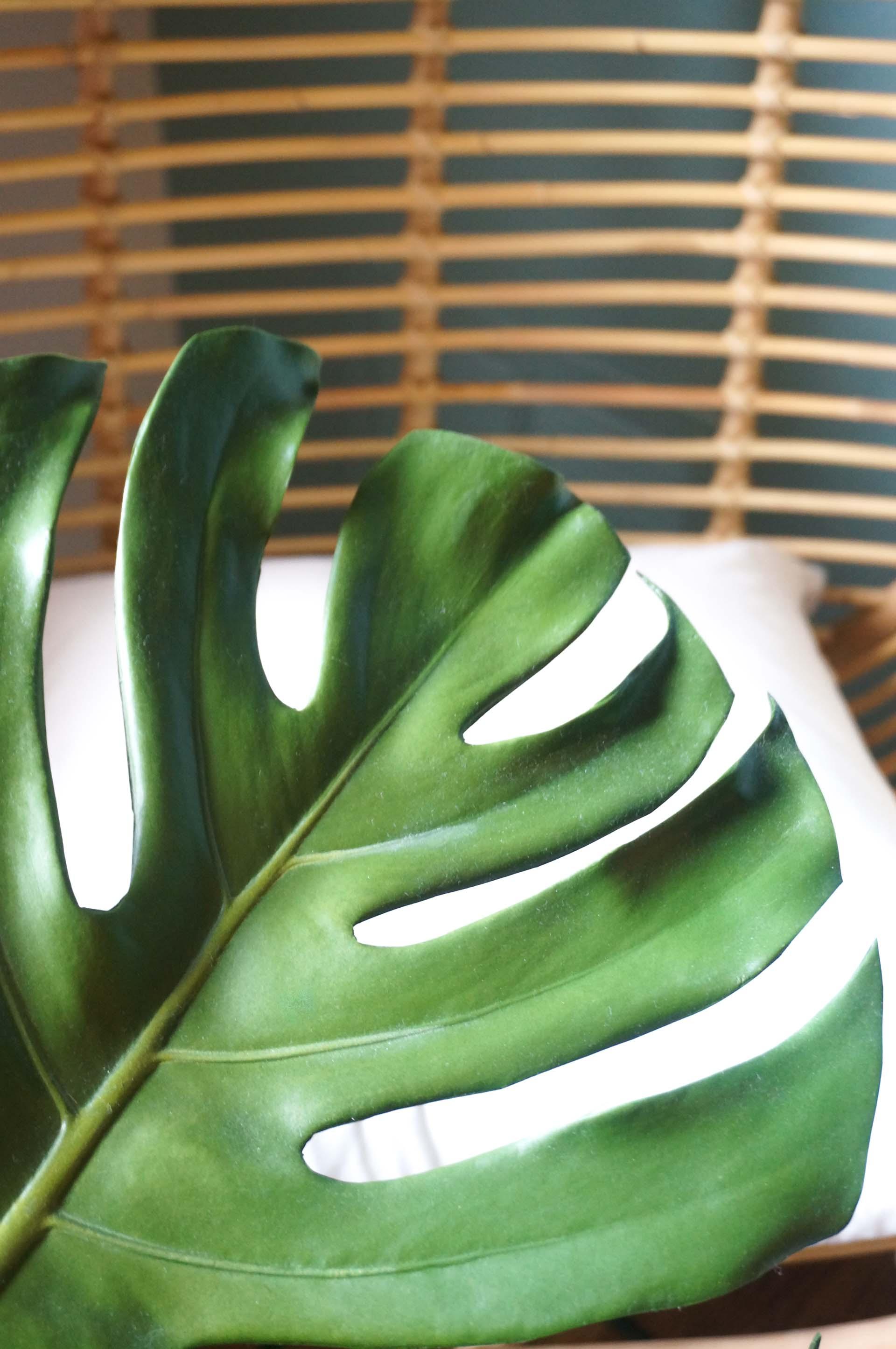 A monstera leaf adds a tropical vibe