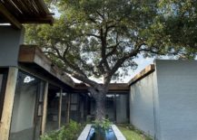 Existing-trees-around-the-house-have-been-carefully-integrated-into-its-design-plan-217x155