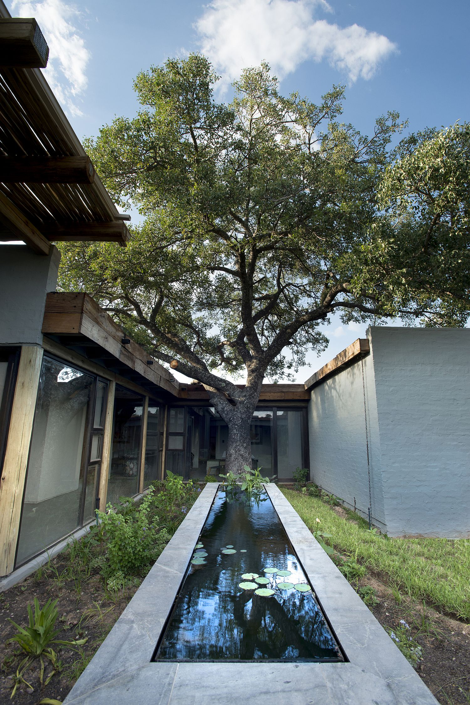 Existing-trees-around-the-house-have-been-carefully-integrated-into-its-design-plan