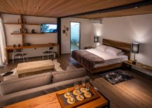 Small-cabin-interior-with-a-nifty-living-area-and-bedroom-217x155