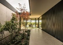 Central-atrium-of-the-house-adds-greenery-to-the-interior-217x155