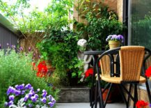 Filling-up-the-small-blacony-with-plants-helps-you-create-an-oasis-of-green-in-the-city-217x155