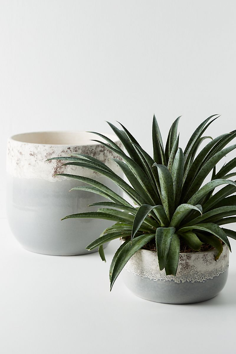 Grey planters from Anthropologie