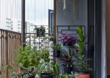 Potted-plants-for-the-small-modern-balcony-217x155