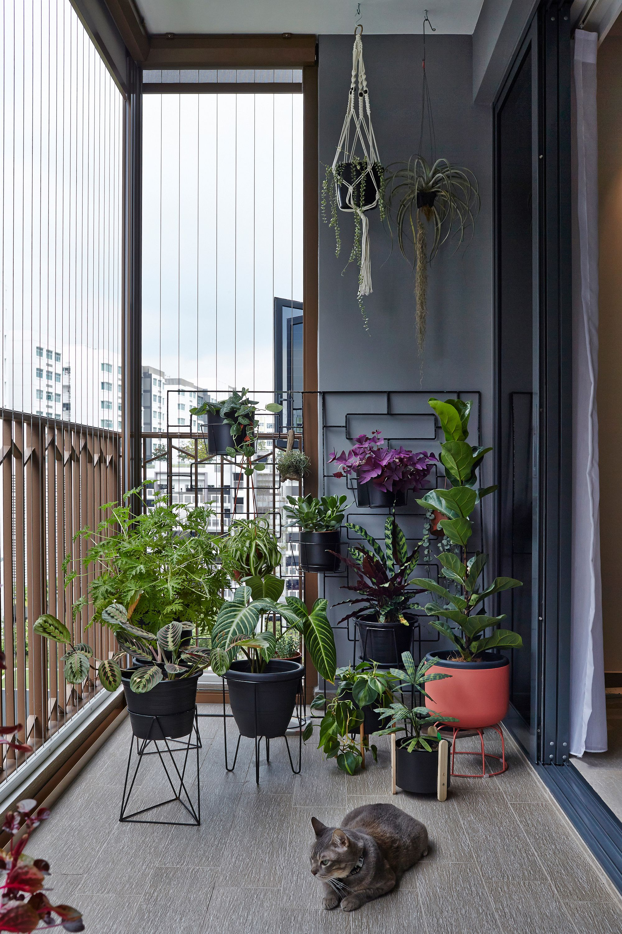 Potted plants for the small modern balcony