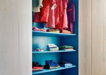 Beautiful-blue-closet-in-the-bedroom-adds-color-to-a-neutral-setting-217x155