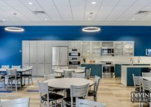 Innovative-use-of-blue-and-white-in-the-contemporary-kitchen-217x155