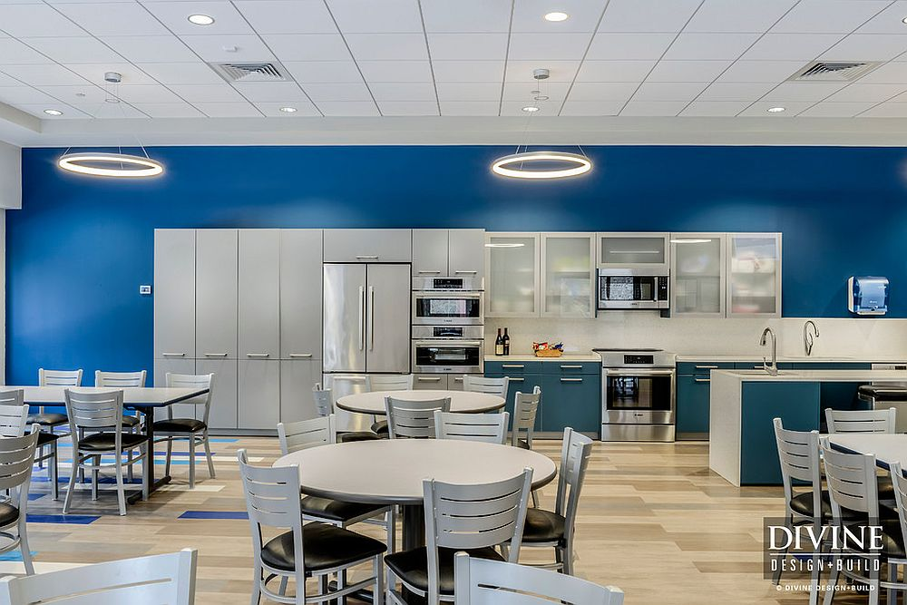Innovative-use-of-blue-and-white-in-the-contemporary-kitchen