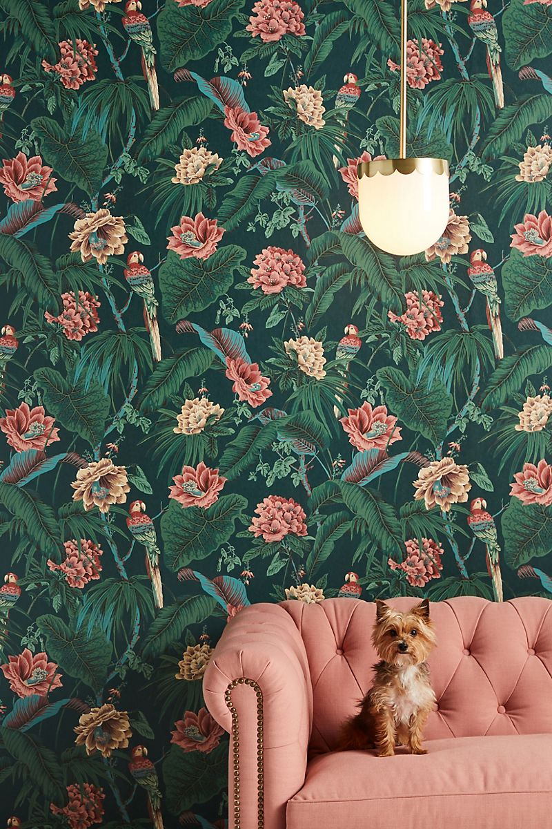 jungle pattern wallpaper featuring parrots and pink and yellow flowers