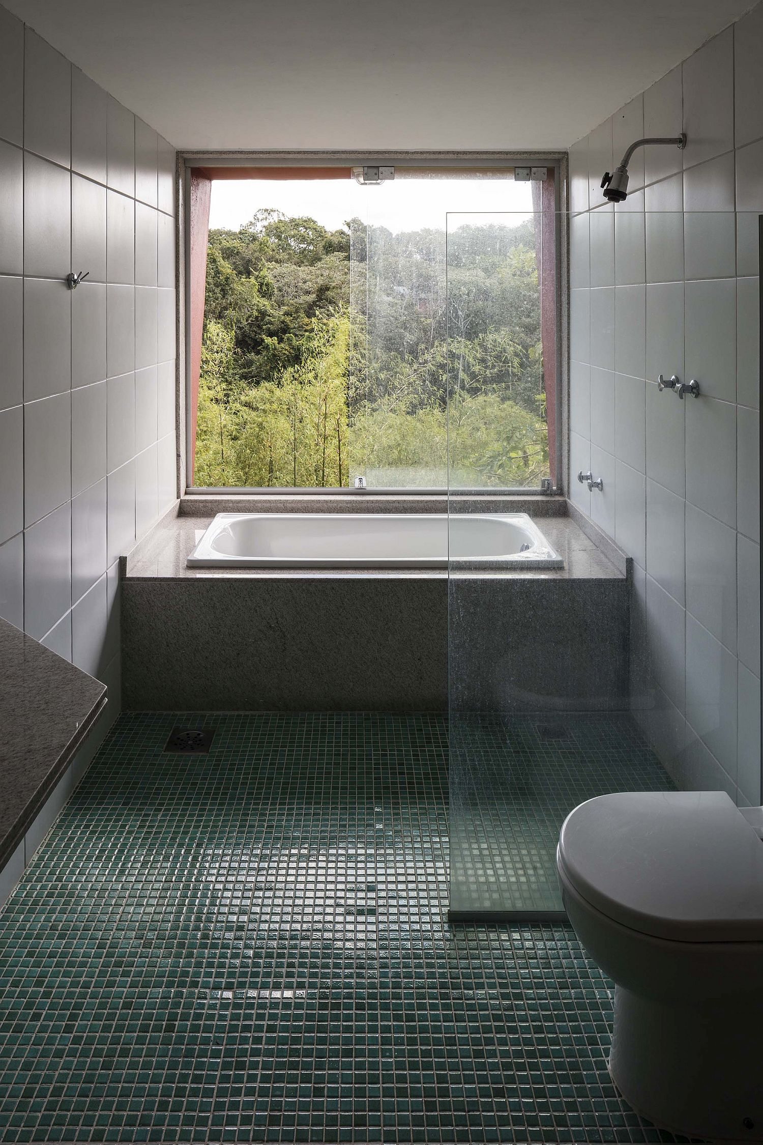 Contemporary bathroom of the house with forest view