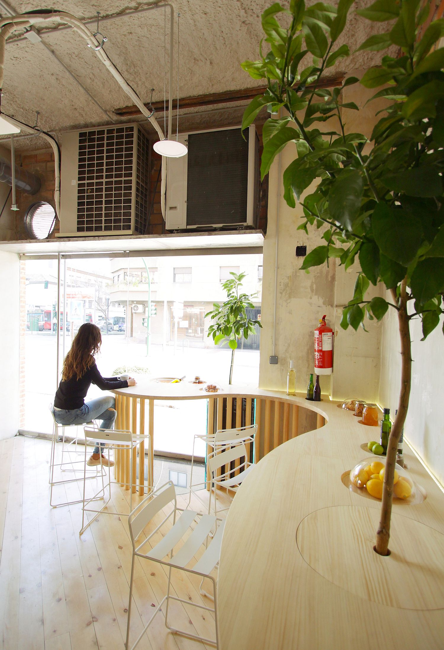 Indoor plants bring greenery to the restaurant