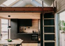 dashing-black-shelves-with-modern-ergonomics-create-efficient-kitchen-inside-the-cabin-217x155