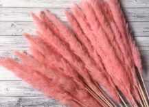 Pink-pampass-grass-from-Etsy-shop-Panapaclub-217x155