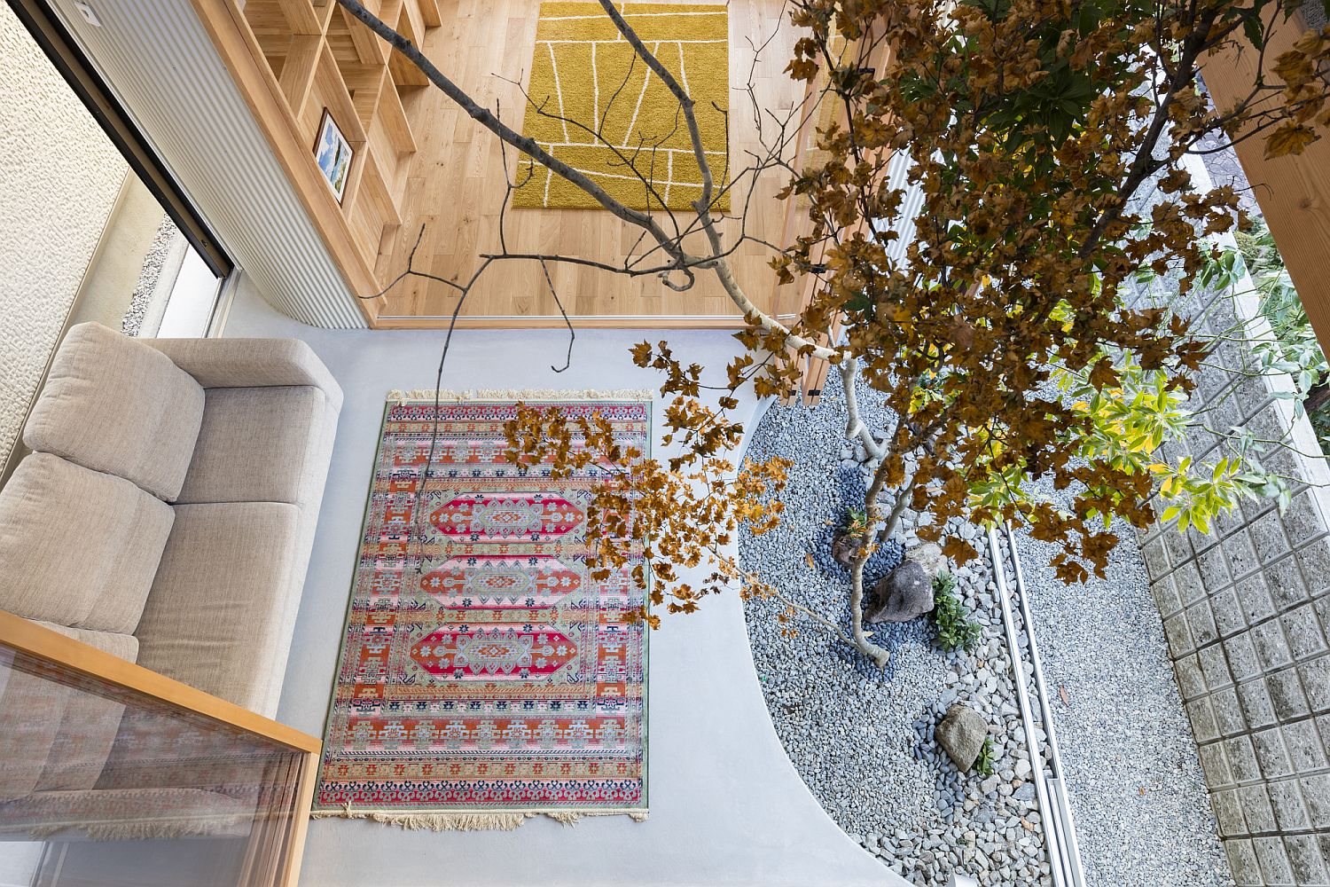 Stylish dry garden inside the house viewed from above
