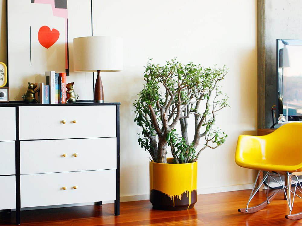 Colorful and striking way to add greenery to the eclectic modern bedroom