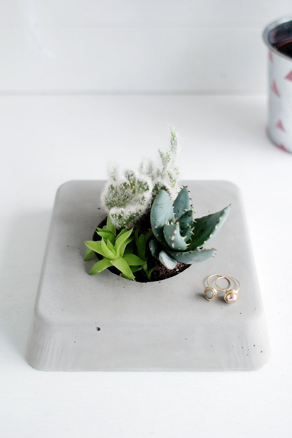 Concrete homemade succulent panters that are super-easy to make