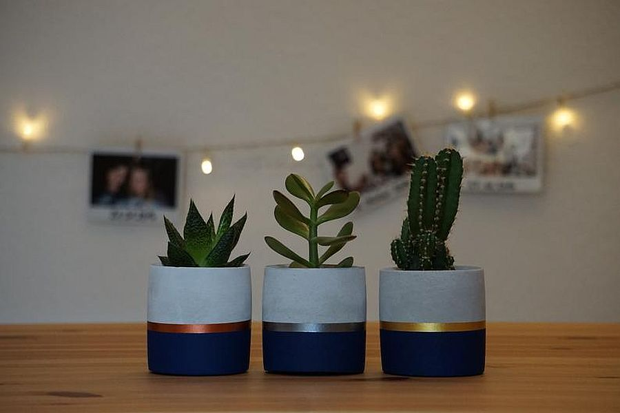Gorgeous small concrete planters with a splash of blue and some metallic charm