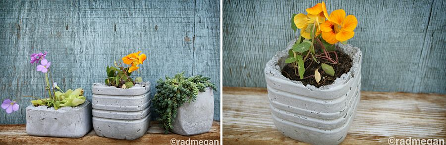 Modern molded concrete planters take little time to make