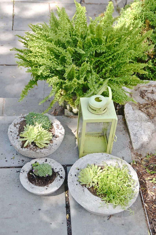 Take the DIY concrete planter idea outdoors this spring!