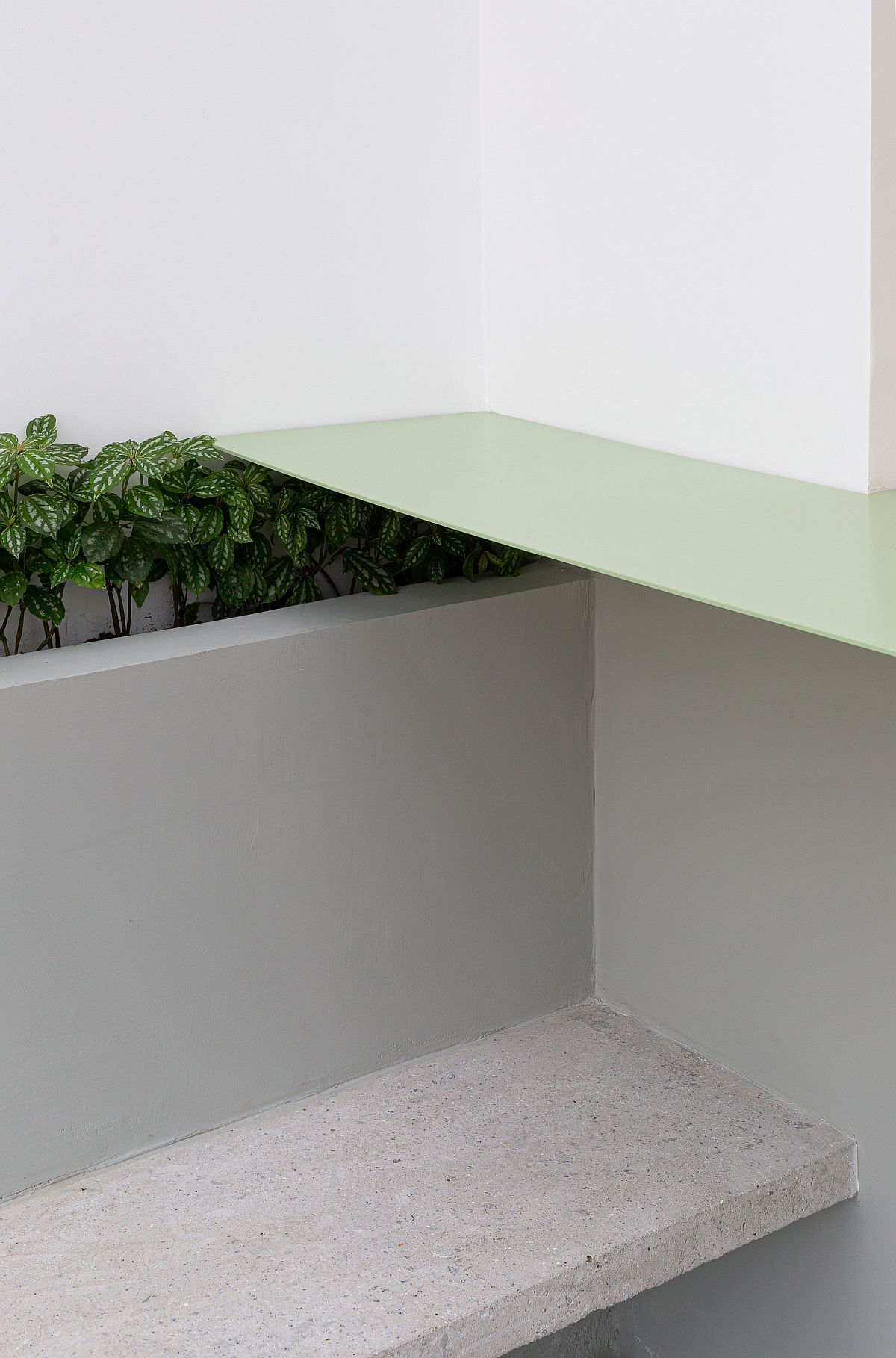 Finding-space-for-greenery-inside-the-modern-restaurant-23929