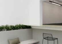 Natural-light-and-greenery-bring-freshness-to-the-restaurant-interior-91168-217x155