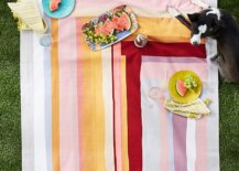Colorful-picnic-blanket-with-stripes-74363-217x155