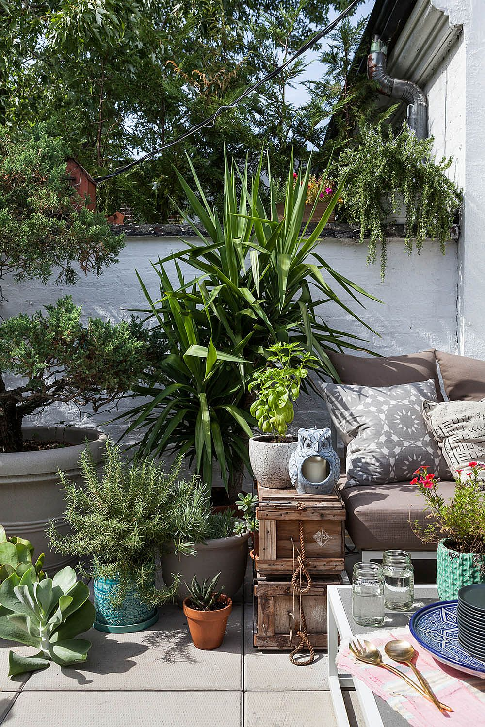 Curated collection of potted plants, reclaimed deor pieces and outdoor decor in the patio