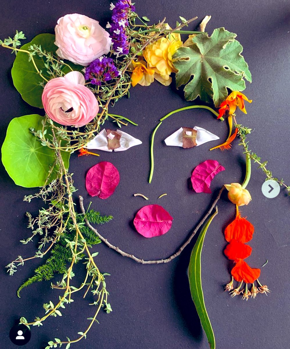 Face-the-Foliage-29903