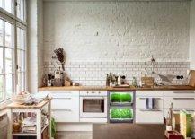 Innovative-contemporary-design-for-the-herb-garden-21234-217x155