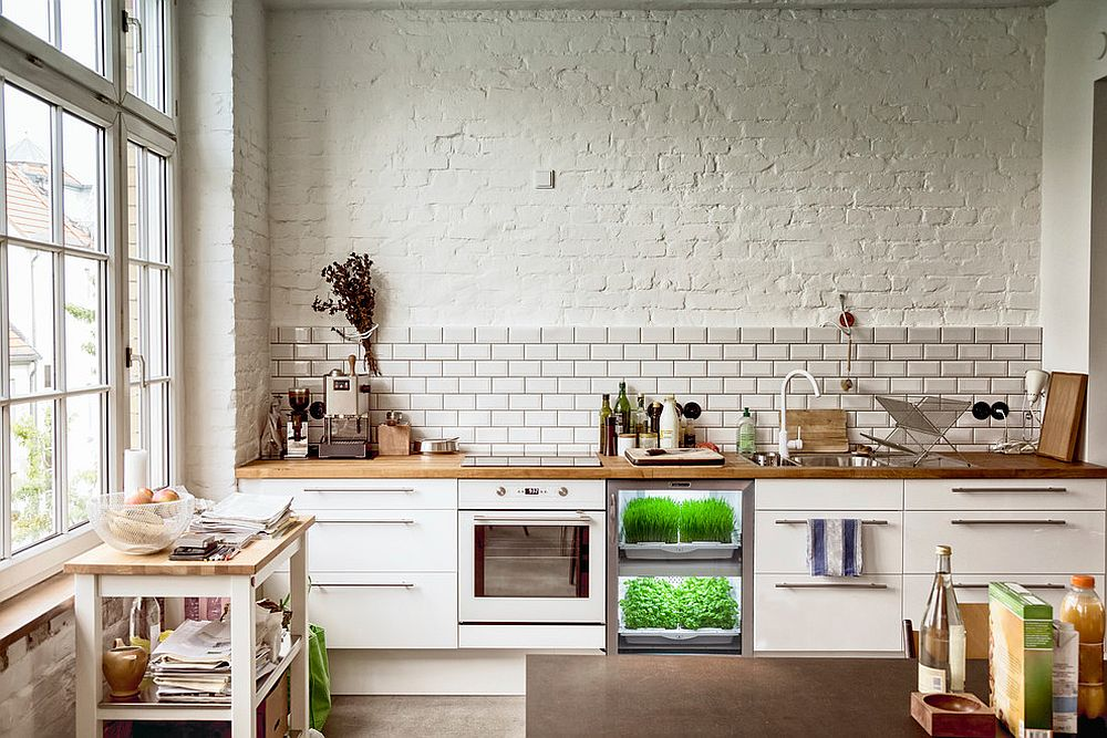 Innovative-contemporary-design-for-the-herb-garden-21234