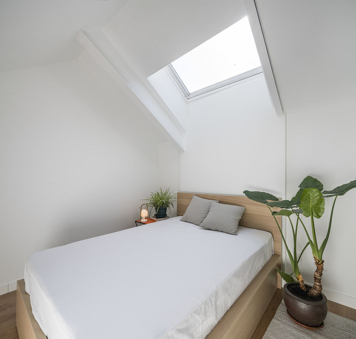 Small and minimal bedroom of the attic apartment with a skylight