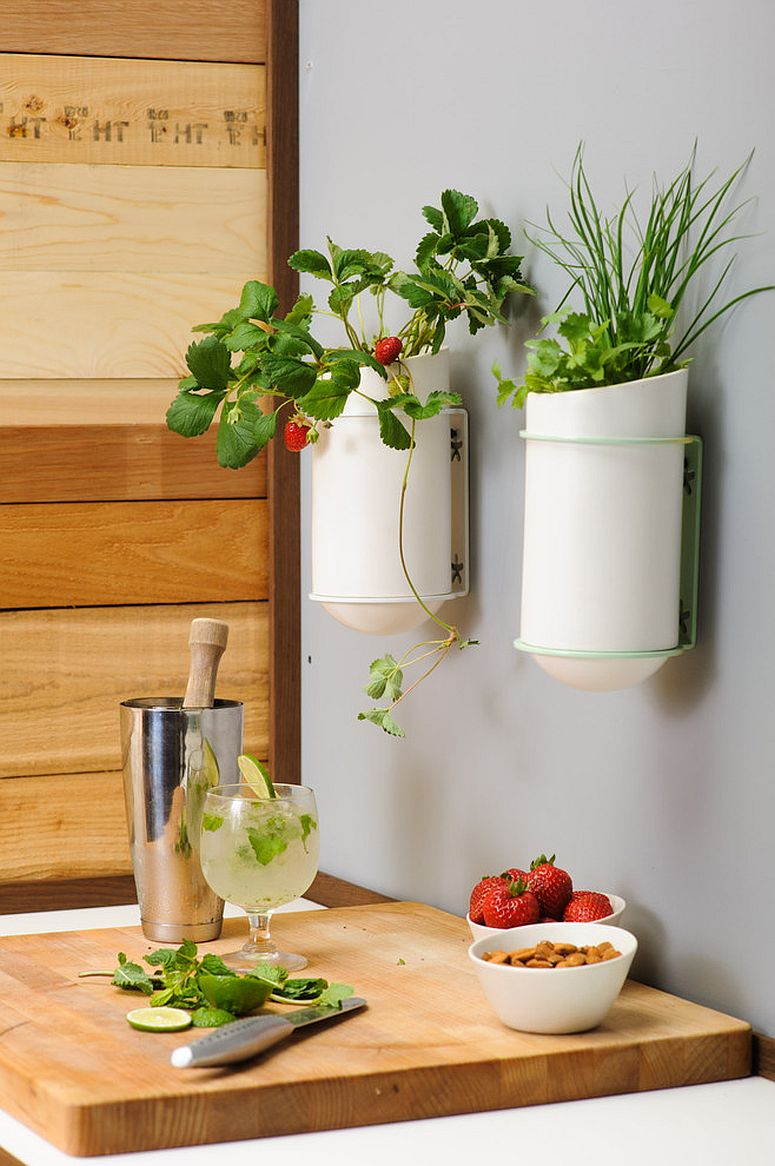Small wall-mounted planters are great in tiny kitchens where there is very limited space to work with