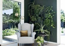 Statement-wall-with-vertical-garden-greenery-65565-217x155