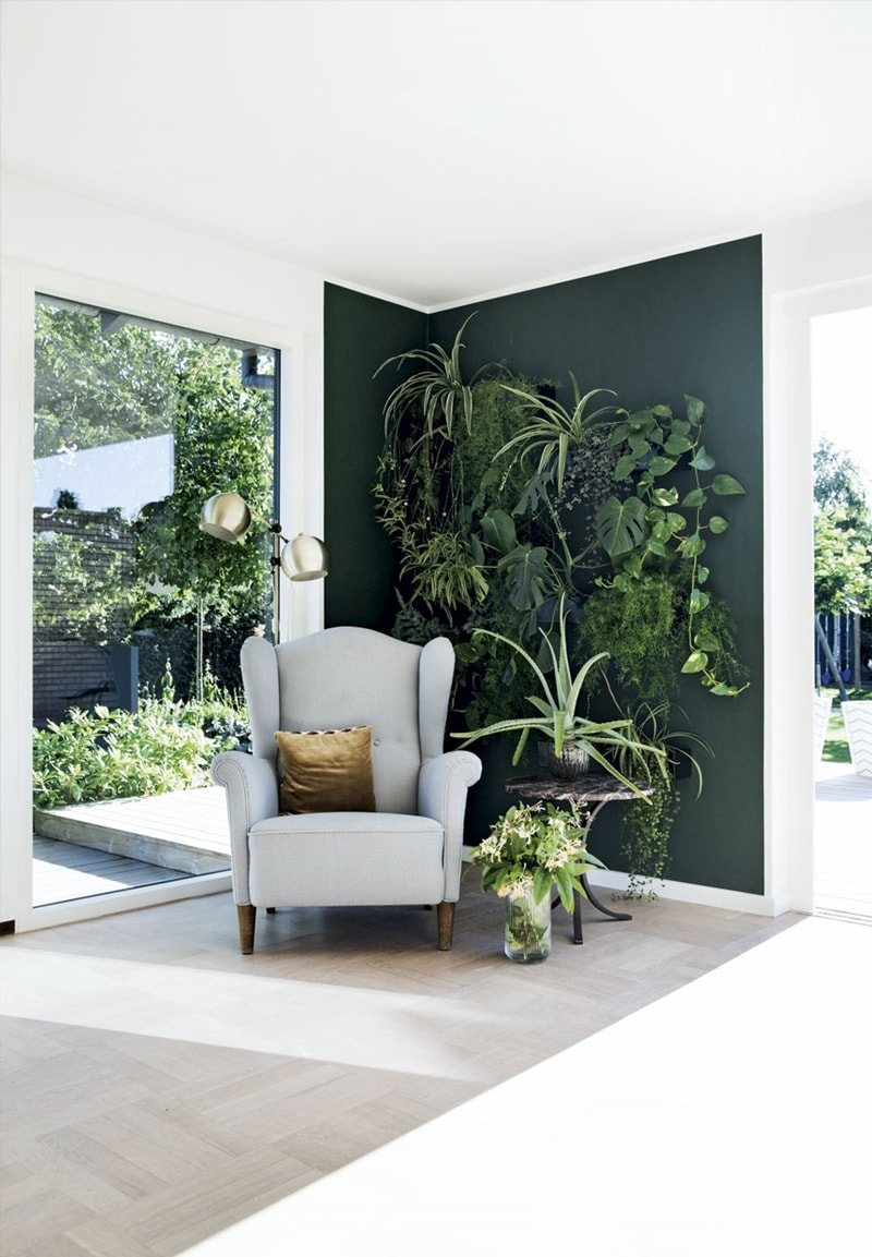 Statement wall with vertical garden greenery